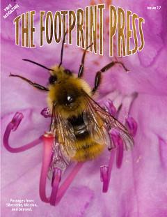 Footprint Press Issue 17